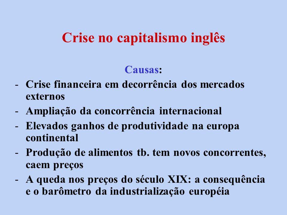 Crise no capitalismo inglês Causas: -Crise financeira em decorrência dos mercados externos -Ampliação da concorrência internacional -Elevados ganhos d