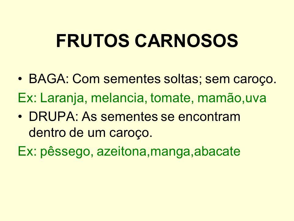 FRUTOS CARNOSOS BAGA: Com sementes soltas; sem caroço. Ex: Laranja, melancia, tomate, mamão,uva DRUPA: As sementes se encontram dentro de um caroço. E