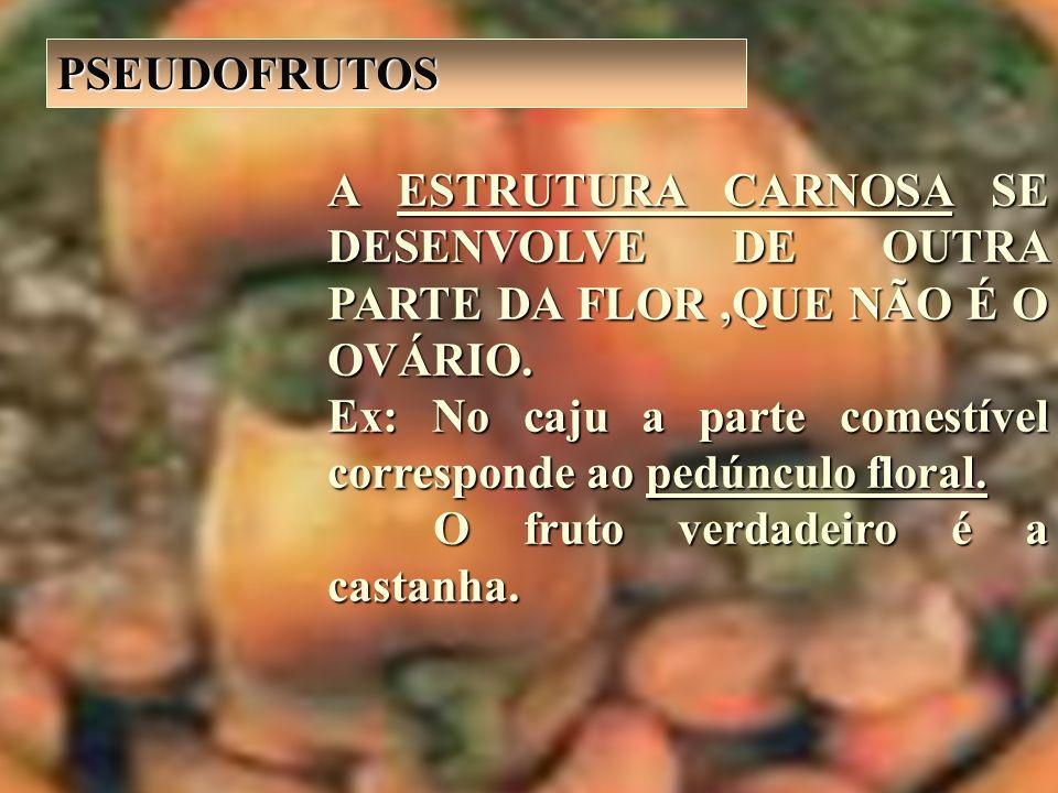 A ESTRUTURA CARNOSA SE DESENVOLVE DE OUTRA PARTE DA FLOR,QUE NÃO É O OVÁRIO. Ex: No caju a parte comestível corresponde ao pedúnculo floral. O fruto v