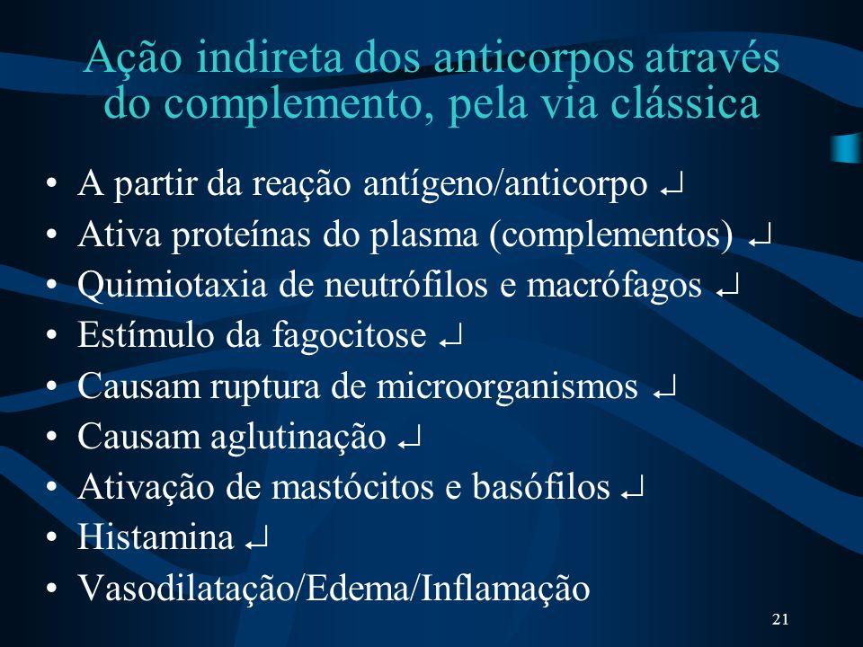 21 Ação indireta dos anticorpos através do complemento, pela via clássica A partir da reação antígeno/anticorpo Ativa proteínas do plasma (complemento