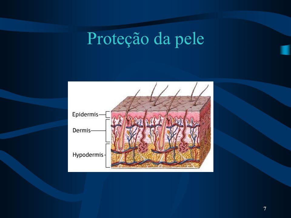 7 Proteção da pele