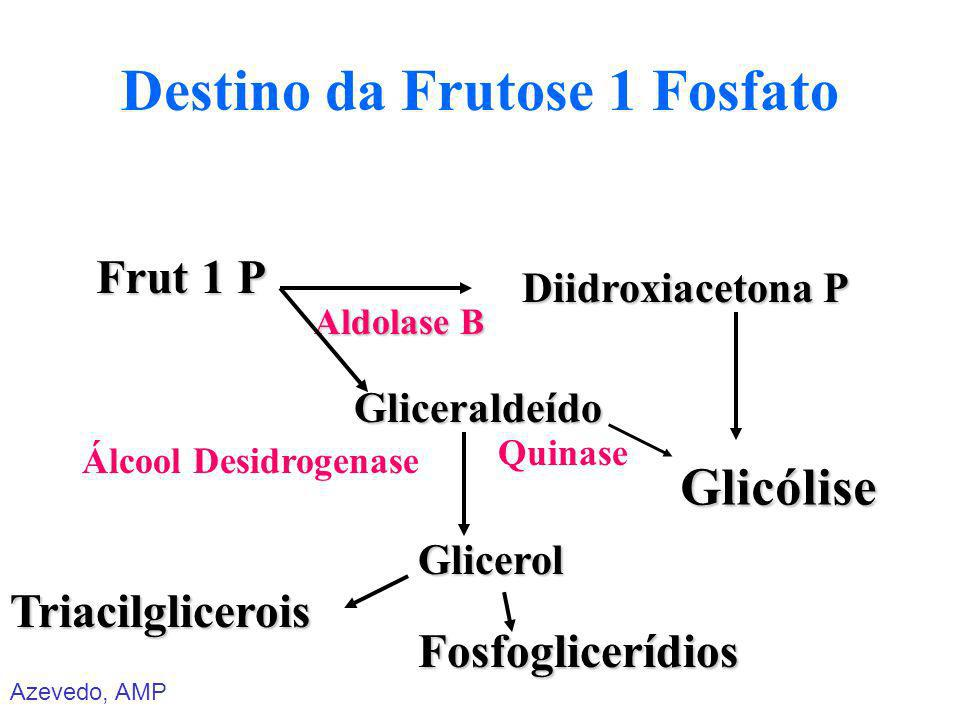 Azevedo, AMP Destino da Frutose 1 Fosfato Frut 1 P Diidroxiacetona P Gliceraldeído Glicólise Aldolase B Álcool Desidrogenase Glicerol Triacilglicerois