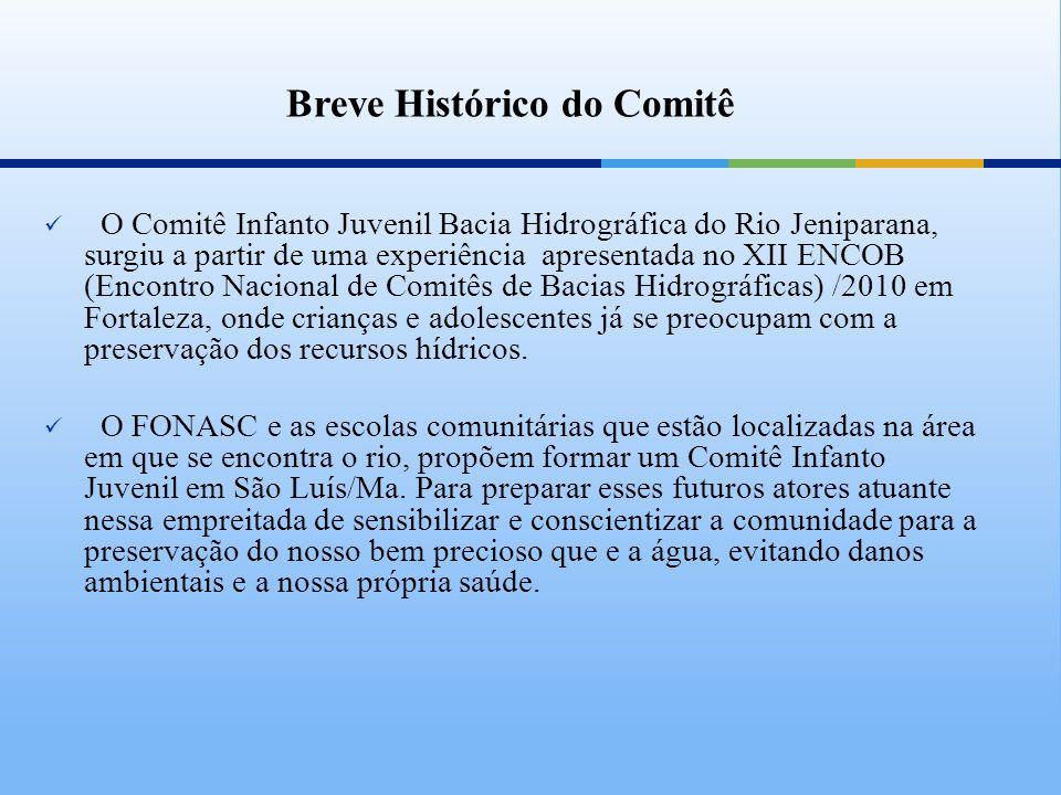 Breve Histórico do Comitê O Comitê Infanto Juvenil Bacia Hidrográfica do Rio Jeniparana, surgiu a partir de uma experiência apresentada no XII ENCOB (