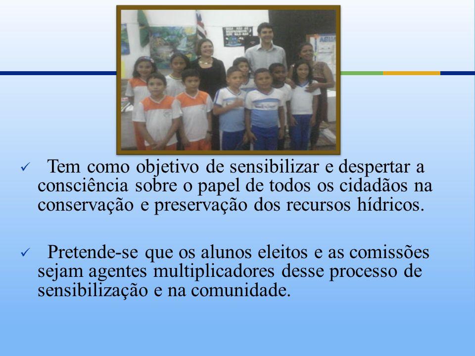 Estrutura do Comitê Secretaria Executiva Colégio Nossa Senhora da Conceição Coordenação Geral Inst.