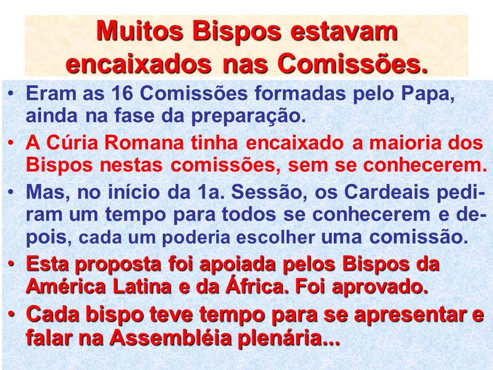 Muitos Bispos estavam encaixados nas Comissões. Eram as 16 Comissões formadas pelo Papa, ainda na fase da preparação. A Cúria Romana tinha encaixado a