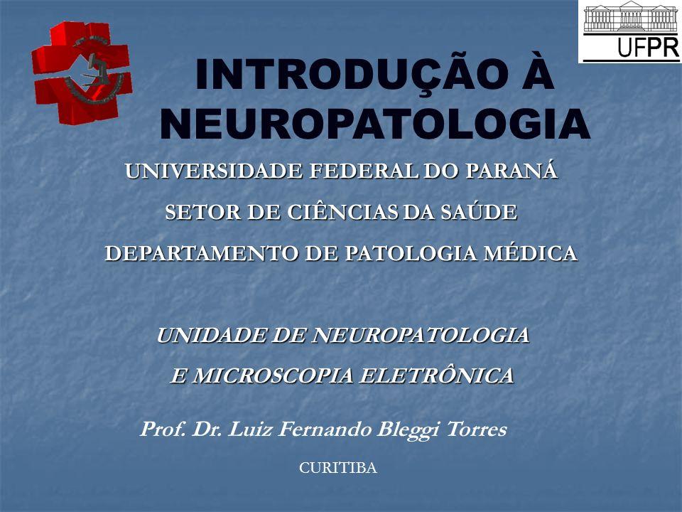INTRODUÇÃO À NEUROPATOLOGIA UNIVERSIDADE FEDERAL DO PARANÁ SETOR DE CIÊNCIAS DA SAÚDE DEPARTAMENTO DE PATOLOGIA MÉDICA UNIDADE DE NEUROPATOLOGIA E MIC
