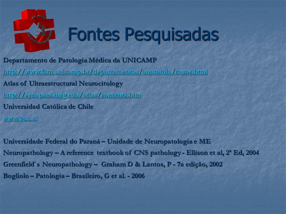 Fontes Pesquisadas Departamento de Patologia Médica da UNICAMP http://www.fcm.unicamp.br/departamentos/anatomia/casos.html Atlas of Ultraestructural N