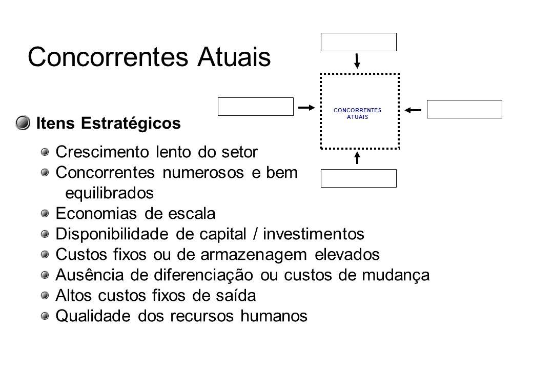 ENTRANTES POTENCIAIS Novos Entrantes Barreiras de Entradas Economias de Escala Diferenciação do produto Necessidades de capital Custos de mudança Aces