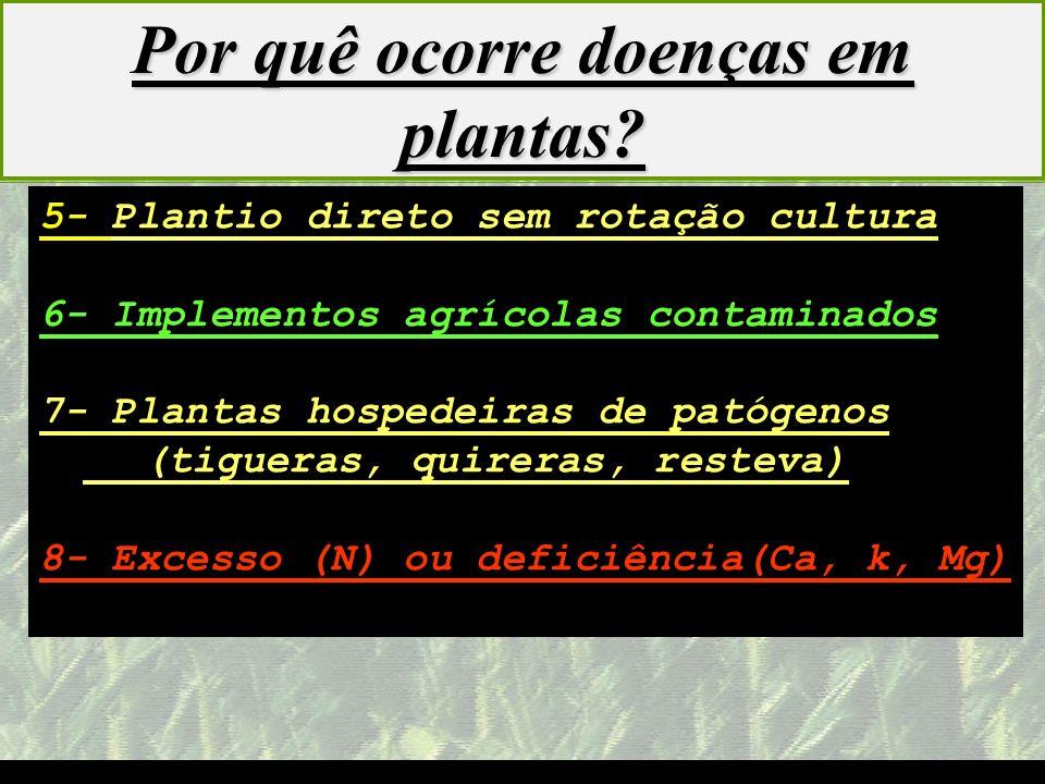 mzuppi.cursos@gmail.com Educação e Treinamento do Homem do Campo 5- Plantio direto sem rotação cultura 6- Implementos agrícolas contaminados 7- Planta