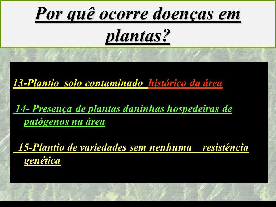 mzuppi.cursos@gmail.com Educação e Treinamento do Homem do Campo 13-Plantio solo contaminado histórico da área 14- Presença de plantas daninhas hosped