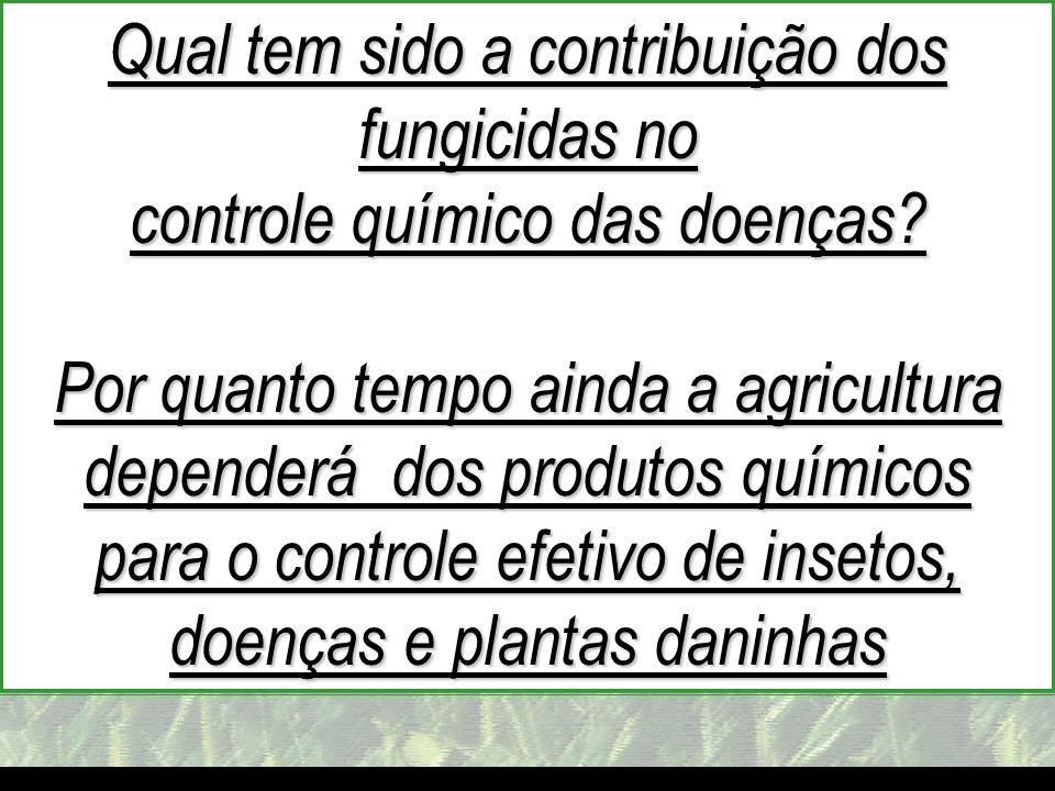 mzuppi.cursos@gmail.com Educação e Treinamento do Homem do Campo Qual tem sido a contribuição dos fungicidas no controle químico das doenças? Por quan