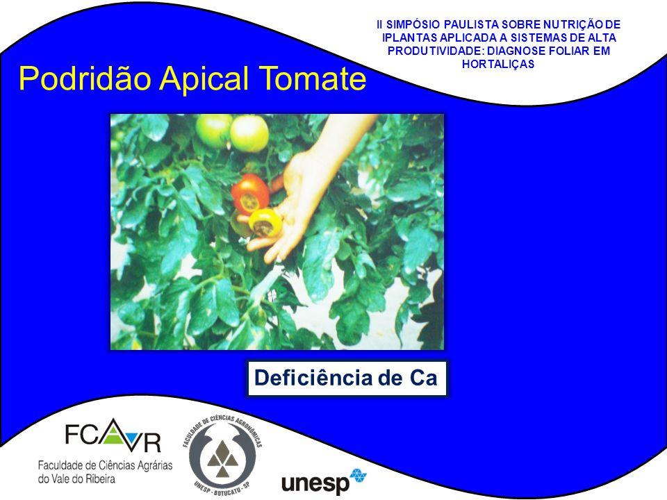 Podridão Apical Tomate Deficiência de Ca II SIMPÓSIO PAULISTA SOBRE NUTRIÇÃO DE IPLANTAS APLICADA A SISTEMAS DE ALTA PRODUTIVIDADE: DIAGNOSE FOLIAR EM