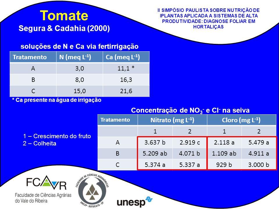 Tomate Segura & Cadahia (2000) TratamentoN (meq L -1 )Ca (meq L -1 ) A3,011,1 * B8,016,3 C15,021,6 soluções de N e Ca via fertirrigação * Ca presente