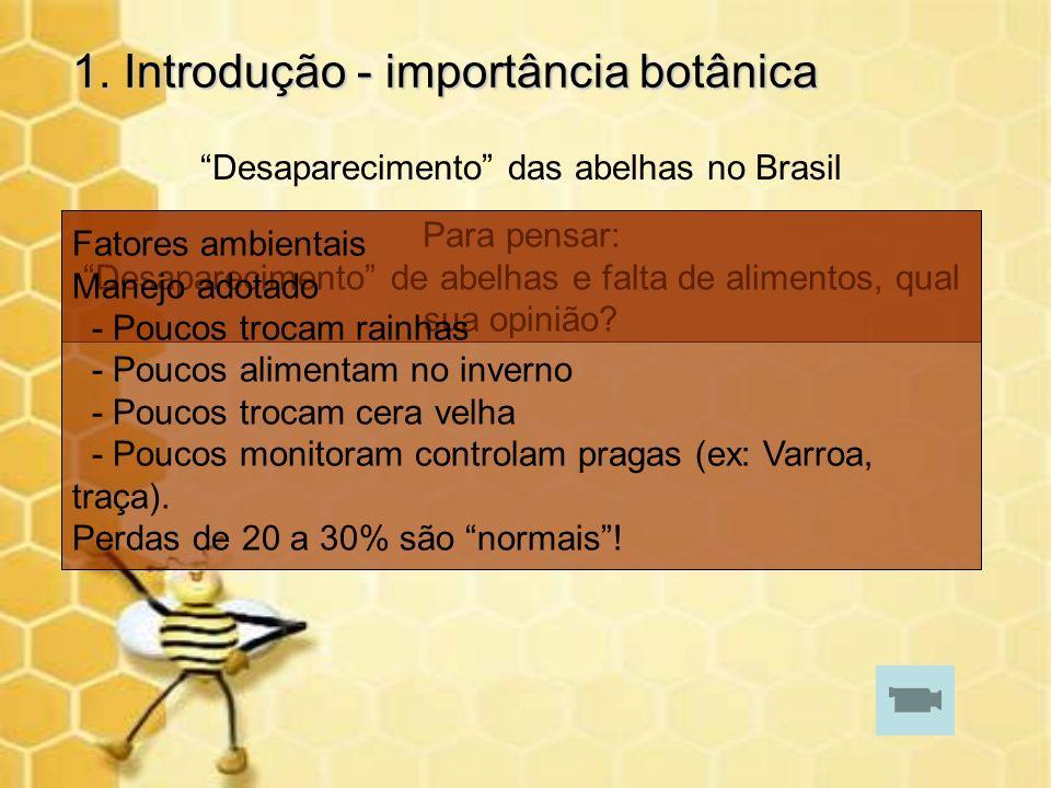 1. Introdução - importância botânica Desaparecimento das abelhas no Brasil Para pensar: Desaparecimento de abelhas e falta de alimentos, qual sua opin