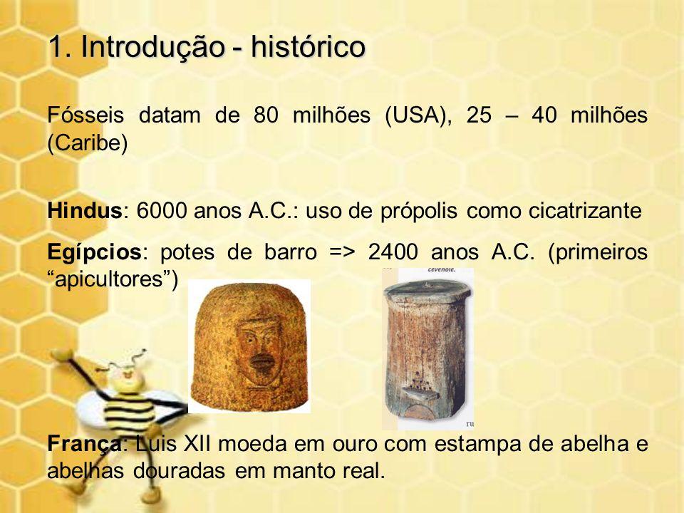 1. Introdução - histórico Fósseis datam de 80 milhões (USA), 25 – 40 milhões (Caribe) Hindus: 6000 anos A.C.: uso de própolis como cicatrizante Egípci