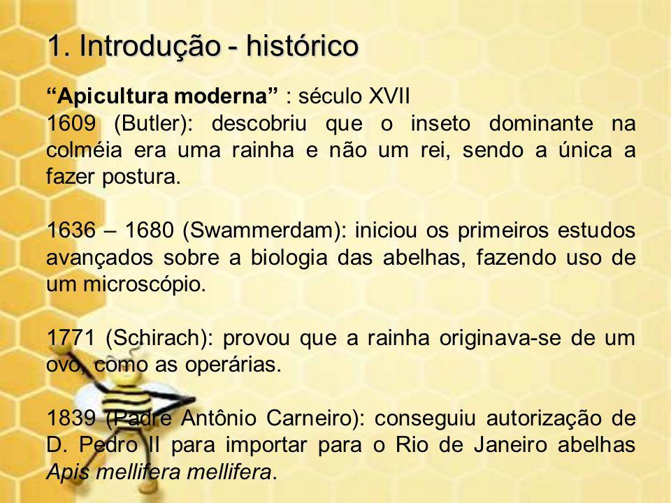 1. Introdução - histórico Apicultura moderna : século XVII 1609 (Butler): descobriu que o inseto dominante na colméia era uma rainha e não um rei, sen