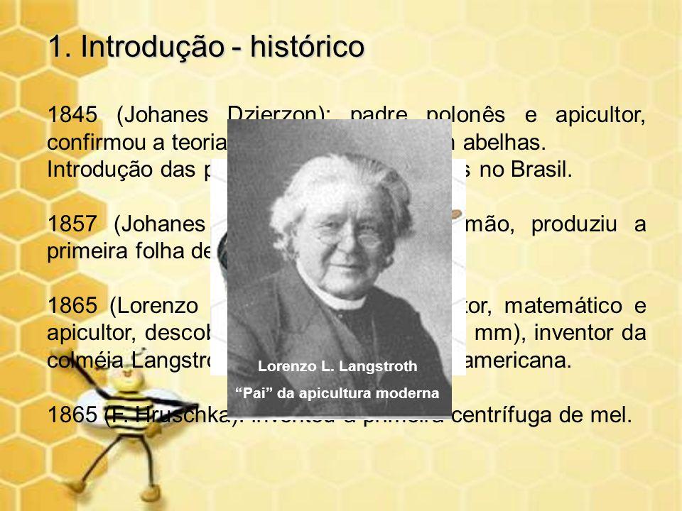 1. Introdução - histórico 1845 (Johanes Dzierzon): padre polonês e apicultor, confirmou a teoria de partenogênese em abelhas. Introdução das primeiras