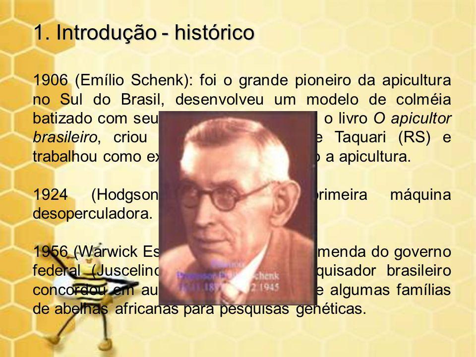 1. Introdução - histórico 1906 (Emílio Schenk): foi o grande pioneiro da apicultura no Sul do Brasil, desenvolveu um modelo de colméia batizado com se