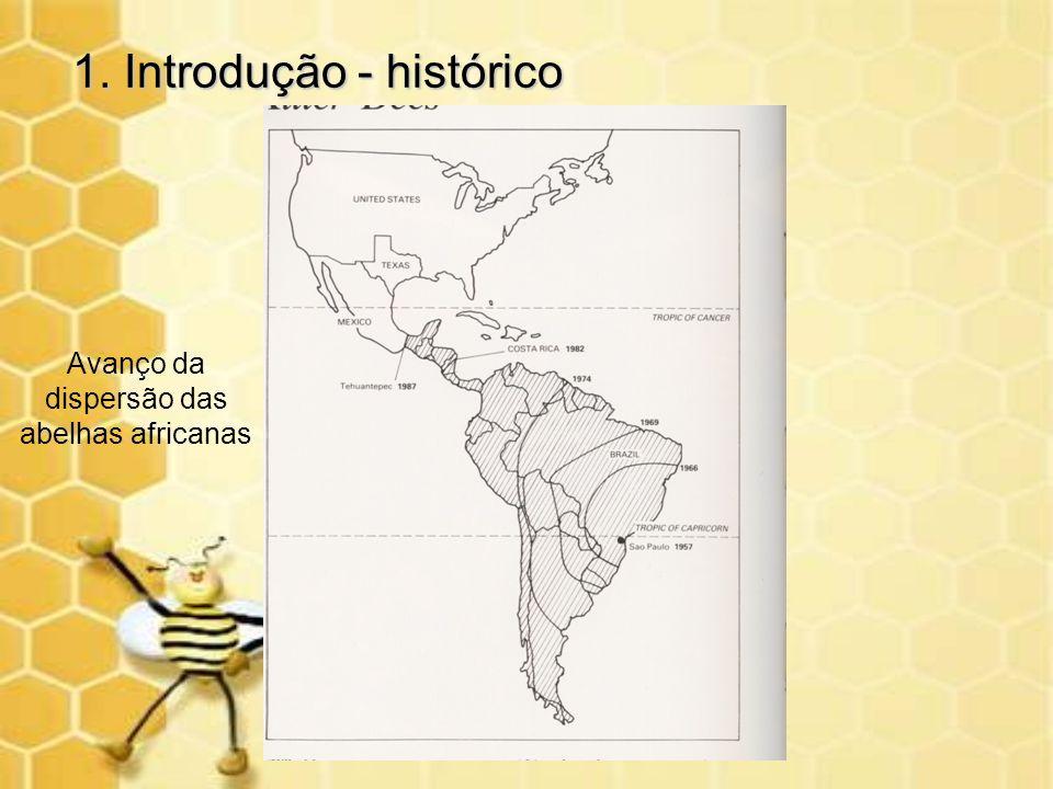 1. Introdução - histórico Avanço da dispersão das abelhas africanas