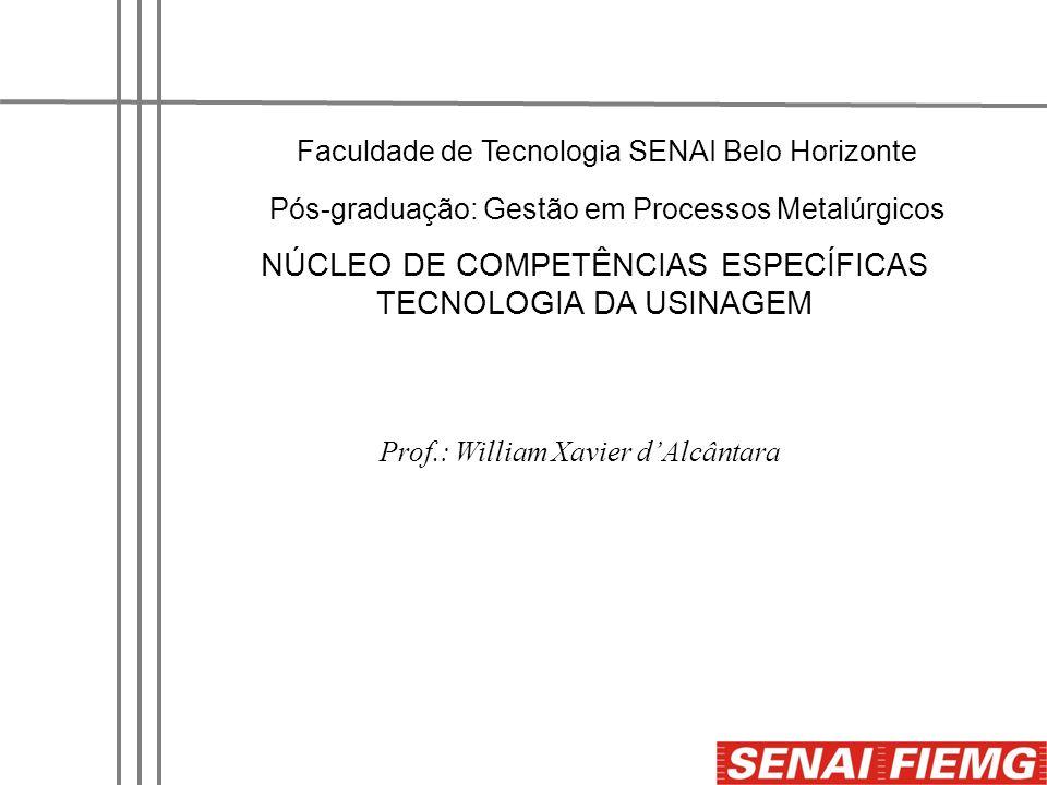 Faculdade de Tecnologia SENAI Belo Horizonte Pós-graduação: Gestão em Processos Metalúrgicos Prof.: William Xavier dAlcântara NÚCLEO DE COMPETÊNCIAS E