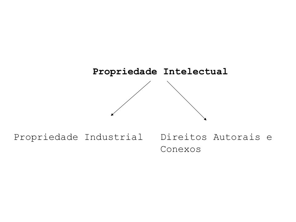 Propriedade Intelectual Propriedade IndustrialDireitos Autorais e Conexos