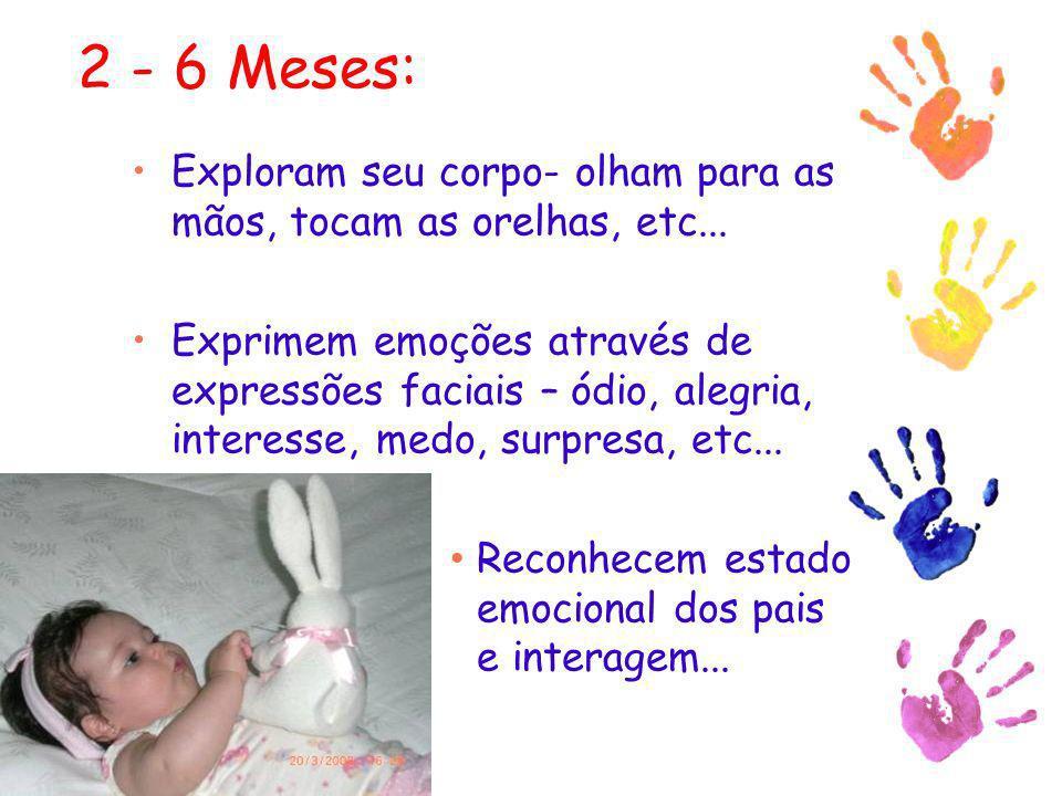 2 - 6 Meses: Exploram seu corpo- olham para as mãos, tocam as orelhas, etc... Exprimem emoções através de expressões faciais – ódio, alegria, interess