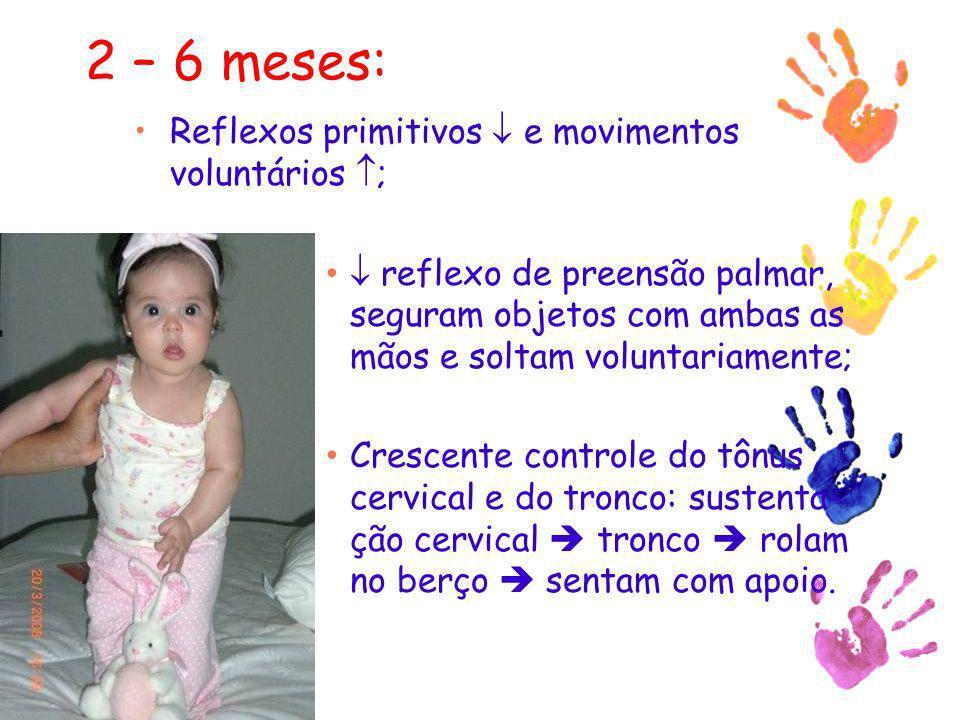 2 – 6 meses: Reflexos primitivos e movimentos voluntários ; reflexo de preensão palmar, seguram objetos com ambas as mãos e soltam voluntariamente; Cr