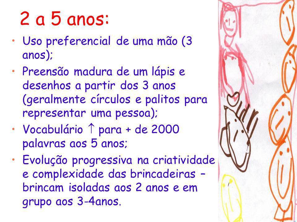2 a 5 anos: Uso preferencial de uma mão (3 anos); Preensão madura de um lápis e desenhos a partir dos 3 anos (geralmente círculos e palitos para repre