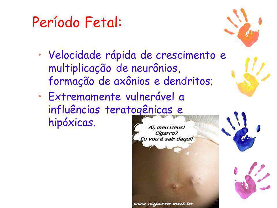 Período Fetal: Velocidade rápida de crescimento e multiplicação de neurônios, formação de axônios e dendritos; Extremamente vulnerável a influências t