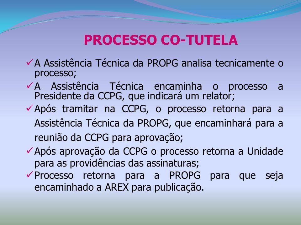 A Assistência Técnica da PROPG analisa tecnicamente o processo; A Assistência Técnica encaminha o processo a Presidente da CCPG, que indicará um relat