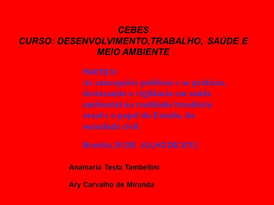CEBES CURSO: DESENVOLVIMENTO,TRABALHO, SAÚDE E MEIO AMBIENTE PARTE III As concepções políticas e as práticas, destacando a vigilância em saúde ambient