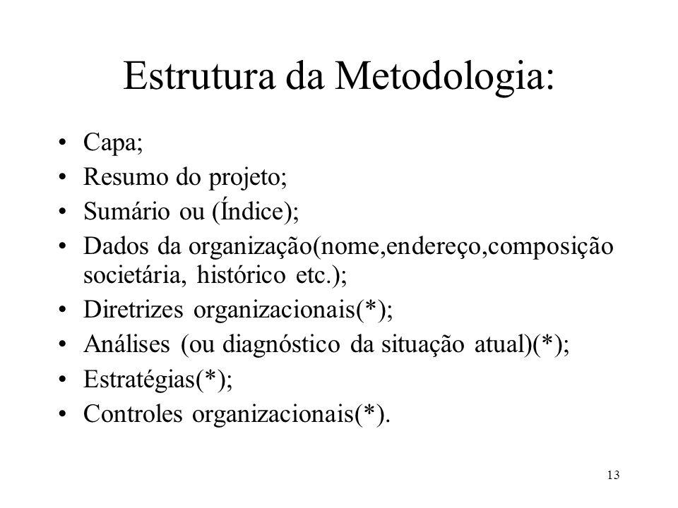 13 Estrutura da Metodologia: Capa; Resumo do projeto; Sumário ou (Índice); Dados da organização(nome,endereço,composição societária, histórico etc.);