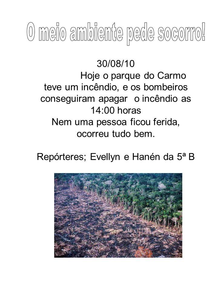 30/08/10 Hoje o parque do Carmo teve um incêndio, e os bombeiros conseguiram apagar o incêndio as 14:00 horas Nem uma pessoa ficou ferida, ocorreu tud