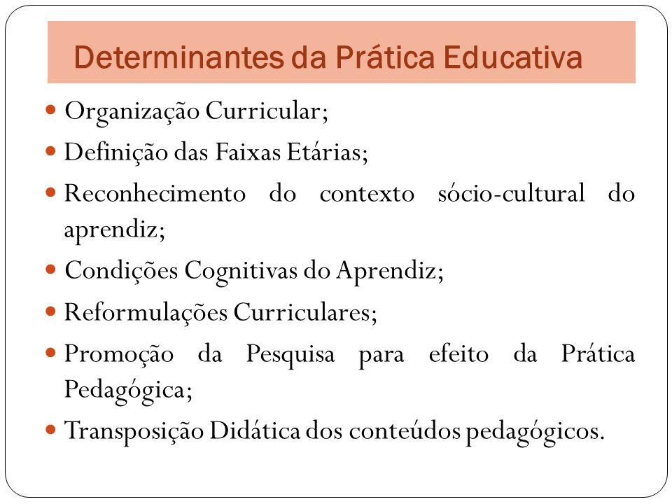 Organização Curricular; Definição das Faixas Etárias; Reconhecimento do contexto sócio-cultural do aprendiz; Condições Cognitivas do Aprendiz; Reformu