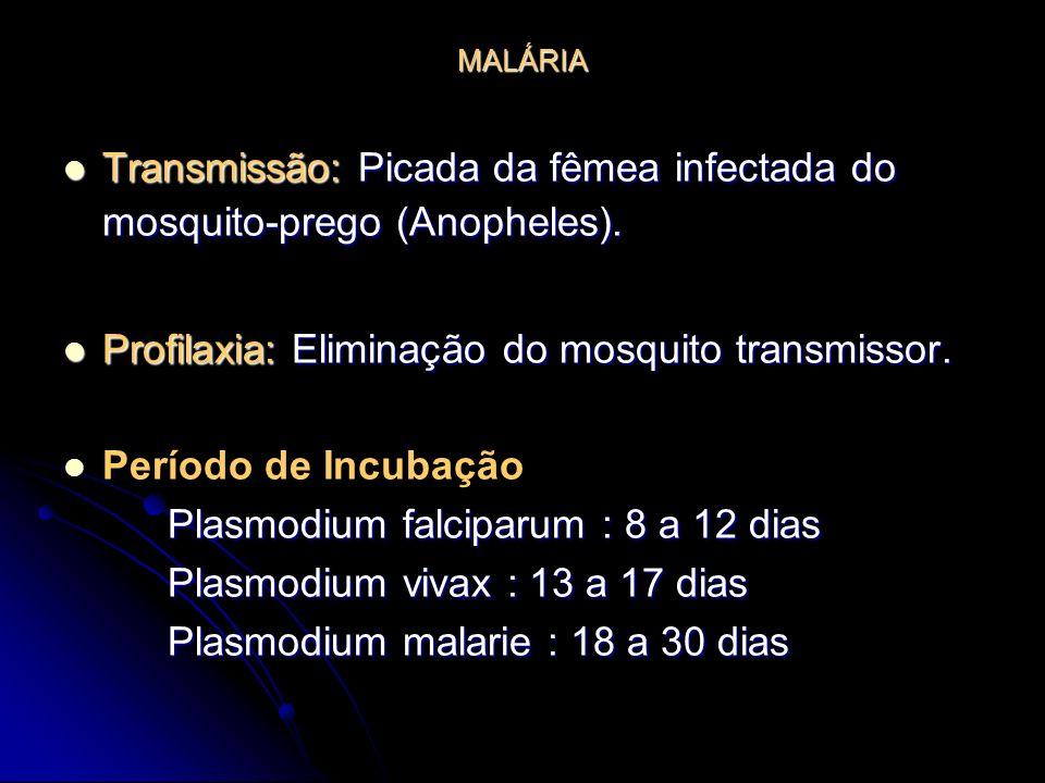 MALÁRIA Transmissão: Picada da fêmea infectada do mosquito-prego (Anopheles). Transmissão: Picada da fêmea infectada do mosquito-prego (Anopheles). Pr