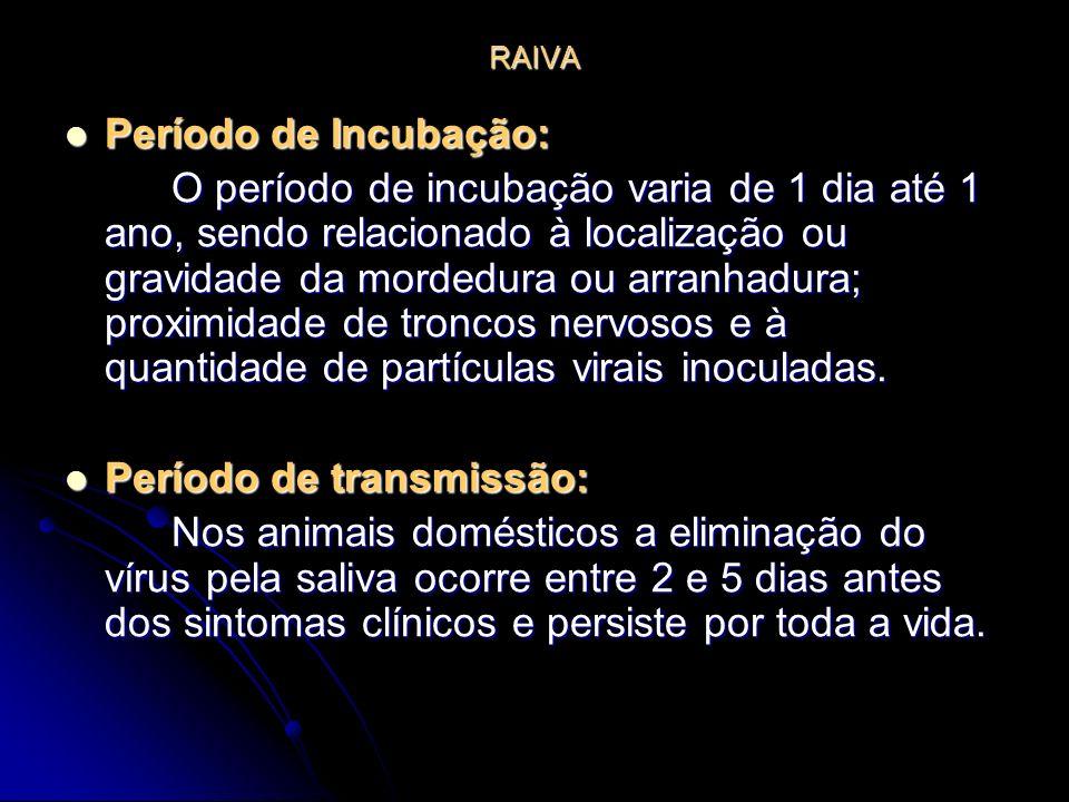 RAIVA Período de Incubação: Período de Incubação: O período de incubação varia de 1 dia até 1 ano, sendo relacionado à localização ou gravidade da mor