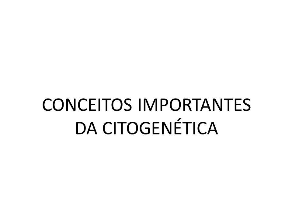 CONCEITOS IMPORTANTES DA CITOGENÉTICA