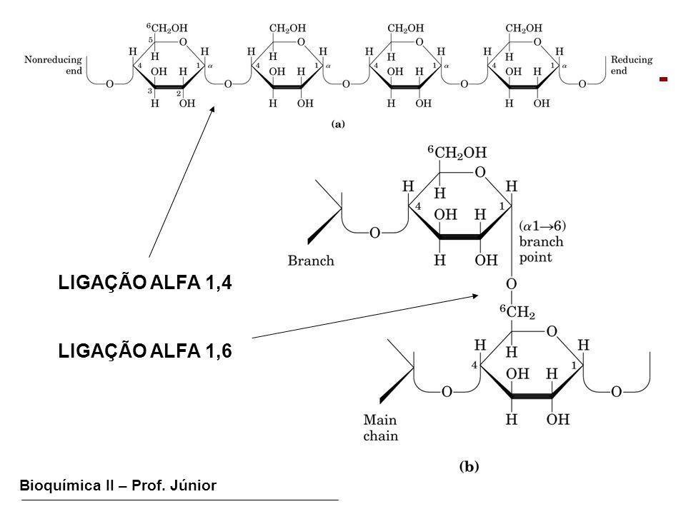 Bioquímica II – Prof. Júnior GLICOGÊNESE LIGAÇÃO ALFA 1,4 LIGAÇÃO ALFA 1,6