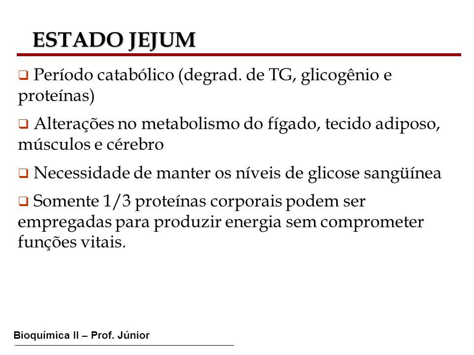 Bioquímica II – Prof. Júnior ESTADO JEJUM ESTADO JEJUM Período catabólico (degrad. de TG, glicogênio e proteínas) Alterações no metabolismo do fígado,