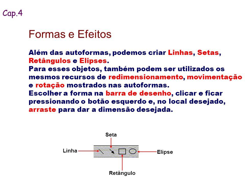 Retângulo Além das autoformas, podemos criar Linhas, Setas, Retângulos e Elipses. Para esses objetos, também podem ser utilizados os mesmos recursos d