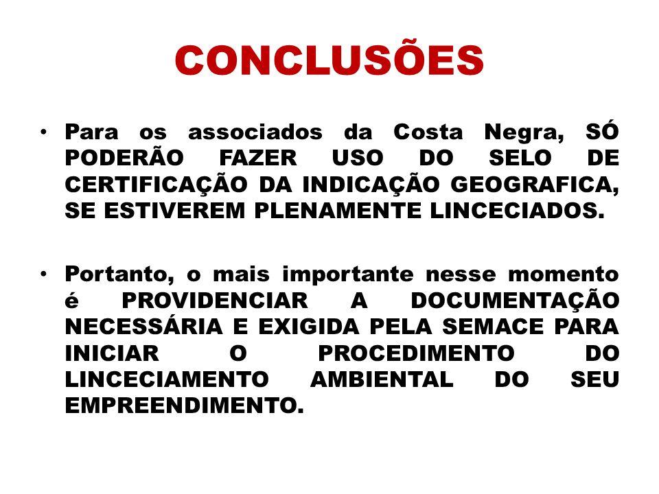 CONCLUSÕES Para os associados da Costa Negra, SÓ PODERÃO FAZER USO DO SELO DE CERTIFICAÇÃO DA INDICAÇÃO GEOGRAFICA, SE ESTIVEREM PLENAMENTE LINCECIADO