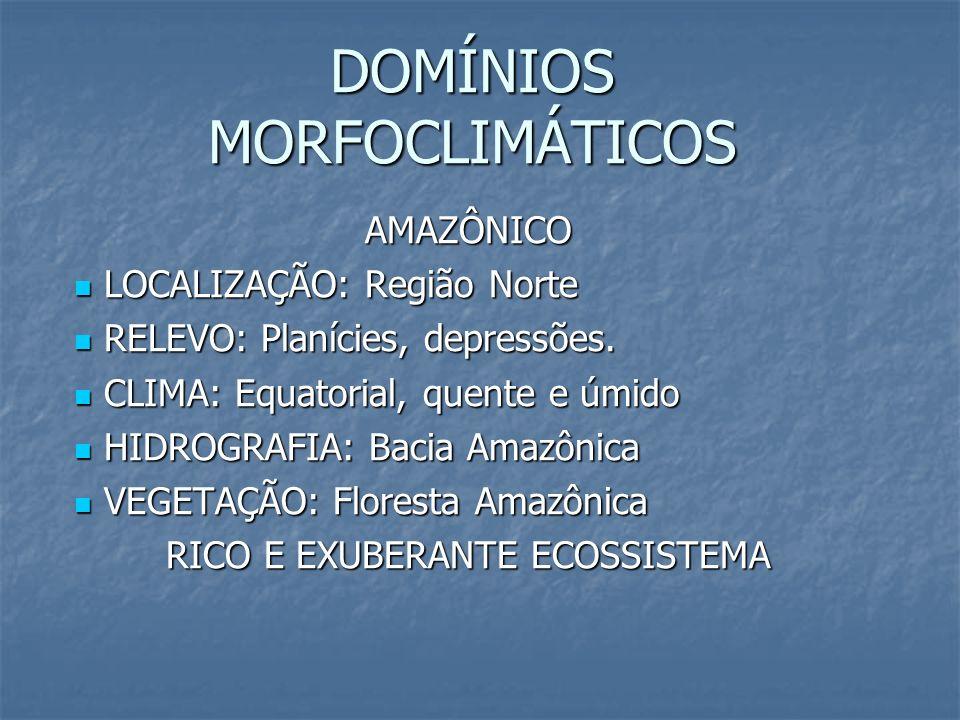 DOMÍNIOS MORFOCLIMÁTICOS AMAZÔNICO LOCALIZAÇÃO: Região Norte LOCALIZAÇÃO: Região Norte RELEVO: Planícies, depressões. RELEVO: Planícies, depressões. C
