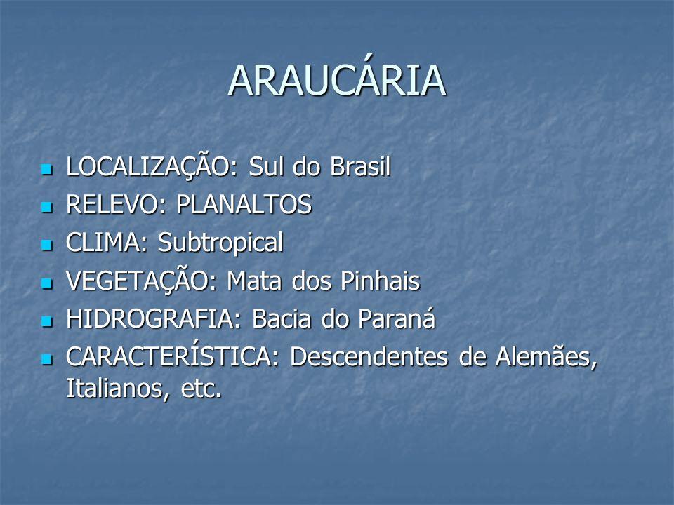 ARAUCÁRIA LOCALIZAÇÃO: Sul do Brasil LOCALIZAÇÃO: Sul do Brasil RELEVO: PLANALTOS RELEVO: PLANALTOS CLIMA: Subtropical CLIMA: Subtropical VEGETAÇÃO: M