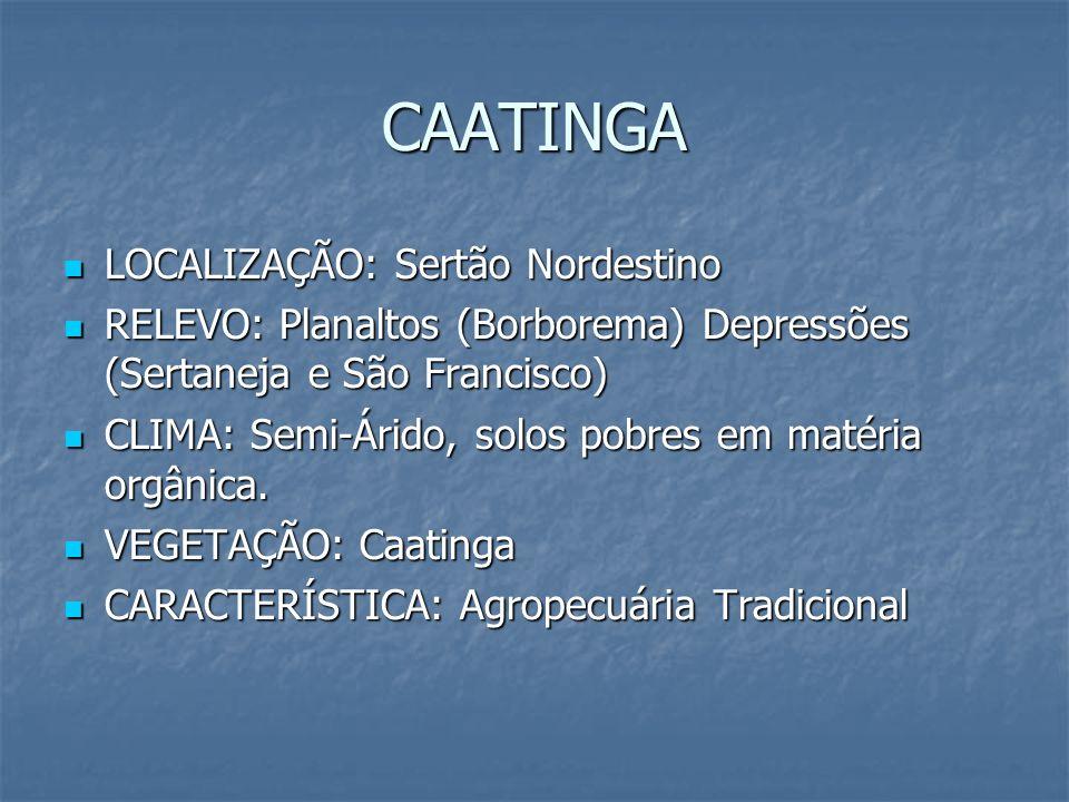 CAATINGA LOCALIZAÇÃO: Sertão Nordestino LOCALIZAÇÃO: Sertão Nordestino RELEVO: Planaltos (Borborema) Depressões (Sertaneja e São Francisco) RELEVO: Pl