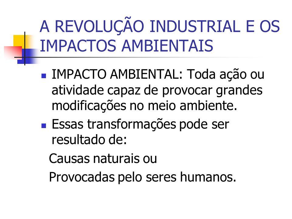 A REVOLUÇÃO INDUSTRIAL E OS IMPACTOS AMBIENTAIS IMPACTO AMBIENTAL: Toda ação ou atividade capaz de provocar grandes modificações no meio ambiente. Ess