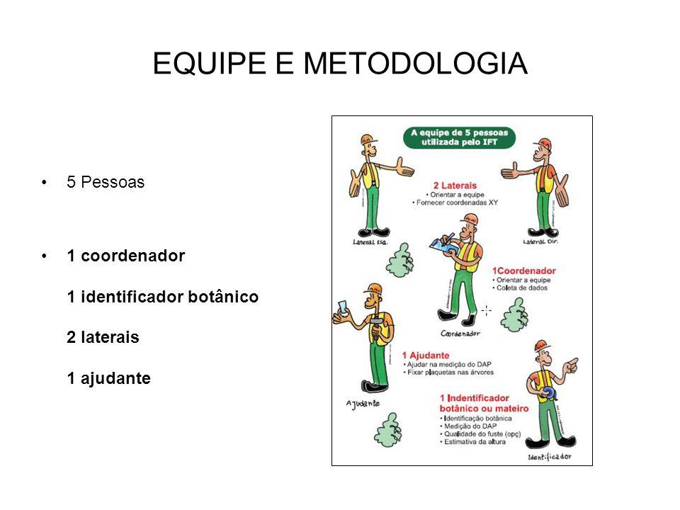 EQUIPE E METODOLOGIA 5 Pessoas 1 coordenador 1 identificador botânico 2 laterais 1 ajudante