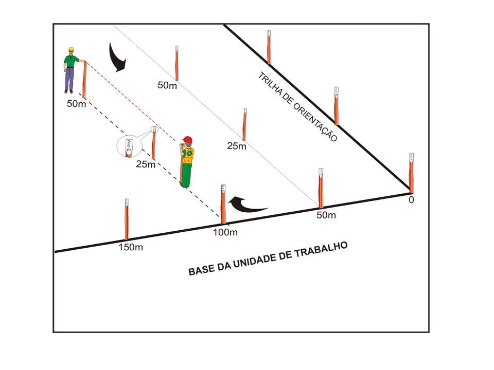 Instalação de parcelas permanentes Equipe: 1 Técnico 3 ajudantes Produção: 1 ha parcelas por dia.