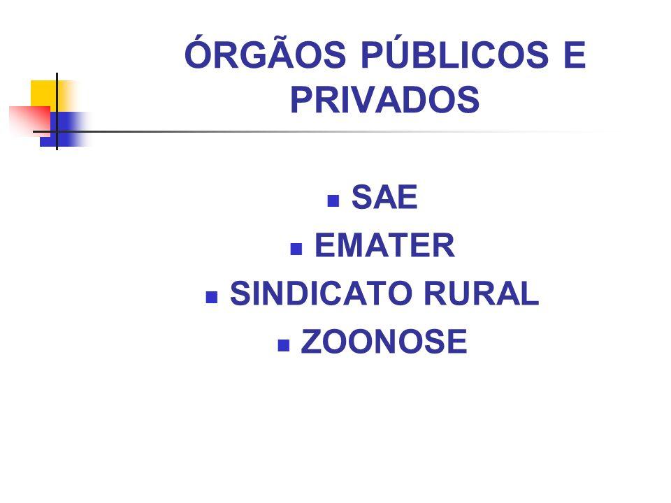 ÓRGÃOS PÚBLICOS E PRIVADOS SAE EMATER SINDICATO RURAL ZOONOSE