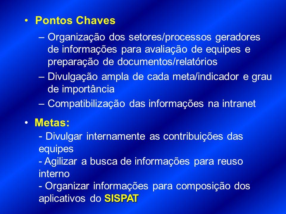 Pontos Chaves –Organização dos setores/processos geradores de informações para avaliação de equipes e preparação de documentos/relatórios –Divulgação