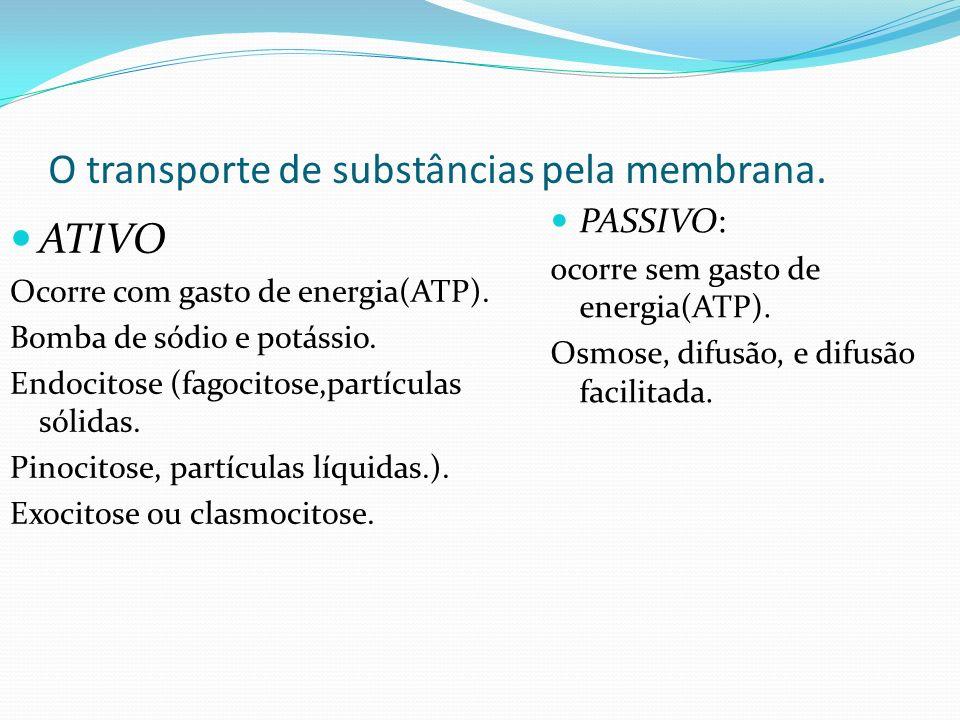 O transporte de substâncias pela membrana. PASSIVO: ocorre sem gasto de energia(ATP). Osmose, difusão, e difusão facilitada. ATIVO Ocorre com gasto de